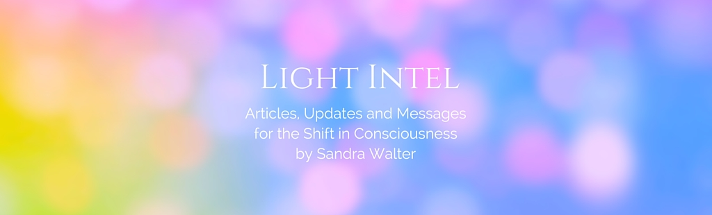 LIGHT INTEL SANDRA WALTER